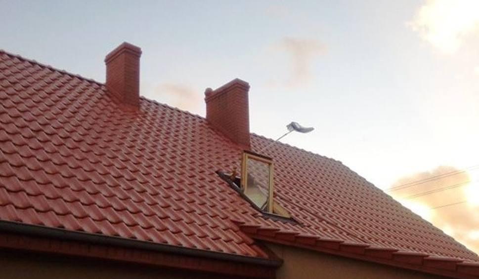 Film do artykułu: Strażacy z OSP Cybinka wyruszyli na pomoc... kotce. Zwierzak utknął na kominie jednego z domów