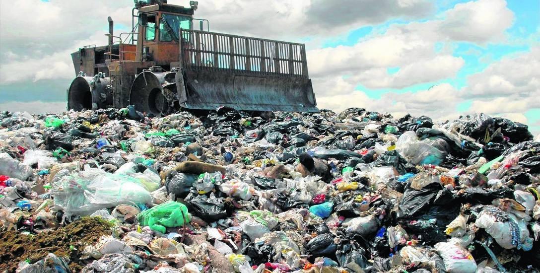 Czy góra śmieci będzie maleć? Ponad 90 proc. mieszkańców deklaruje segregowanie odpadów
