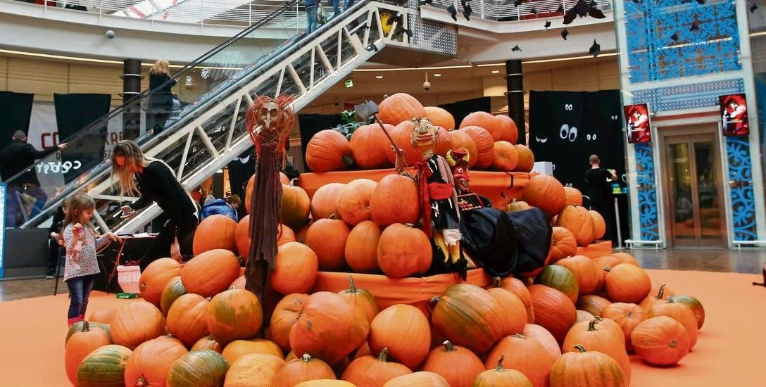 Udekorowali   cztery tony dyni.  Halloween po łódzku