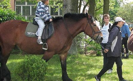Na poprzednich majówkach można było pojeździć konno. Tym razem chętnych wozić będzie bryczka
