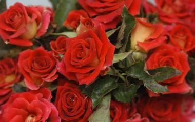 KwiatyNiby mało oryginalny pomysł na prezent, a jednak bardzo cieszy. Mamie na pewno będzie miło. Zdecyduj się na piękny i duży bukiet z kolorowych