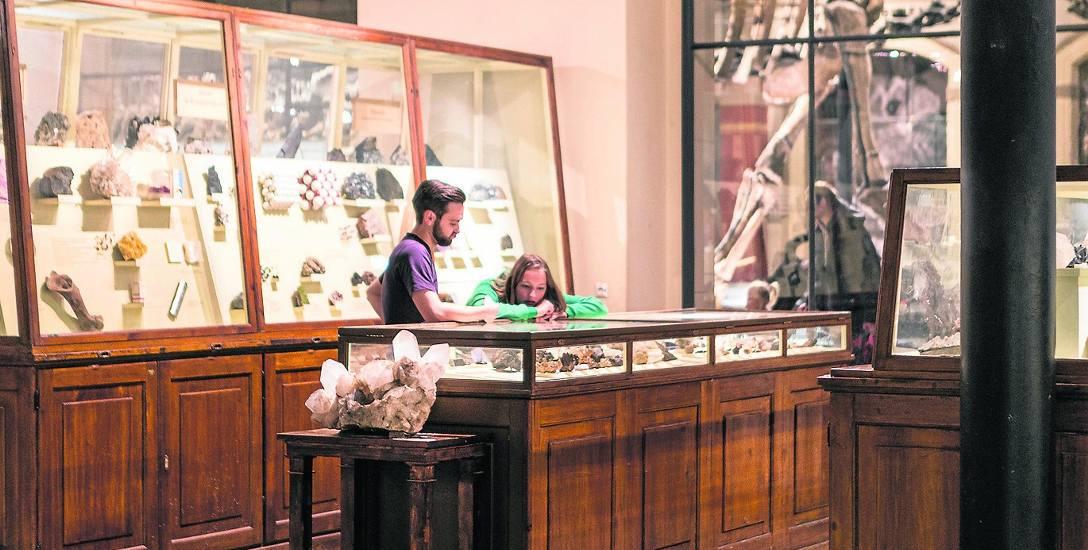 W Centrum Biologicznym w Karsiborze nie zabraknie wystaw tematycznych, podobnie jak w Naturkundemuseum w Berlinie