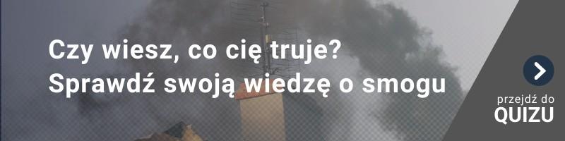 [QUIZ] Czy wiesz, co cię truje? Sprawdź swoją wiedzę o smogu