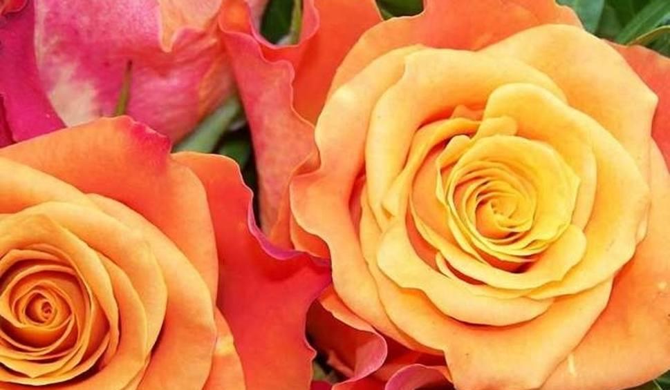 życzenia Na Dzień Matki 2018 Sms Wierszyki Do Wysłania Poważne