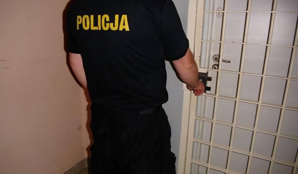 Film do artykułu: Dwaj 19-latkowie z Leska prosto z zakupów w rzeszowskiej galerii trafili do aresztu