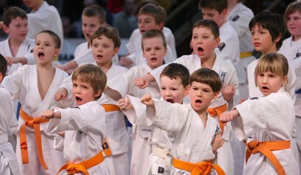 Film do artykułu: Krakowski Klub Kyokushinkai zaprasza na treningi dzieci i młodzież