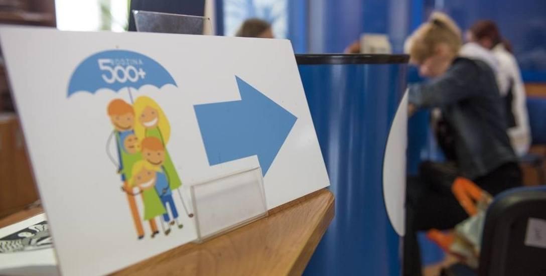 500+ na dzieci rodziców na saksach wpłynie szybciej. Niektórzy czekali nawet rok!