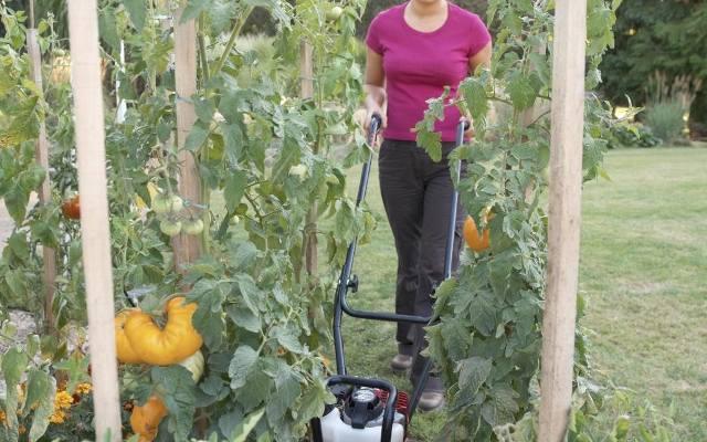 W przydomowym ogródku  do przemieszania wierzchniej warstwy gleby możemy wykorzystać niewielką i lekką glebogryzarkę. Obsługa urządzenia nie wymaga wysiłku,