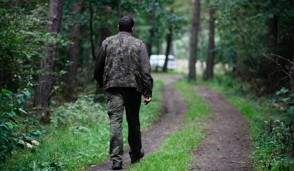 Film do artykułu: Leśniczy z Namysłowa zatrzymany za korupcję