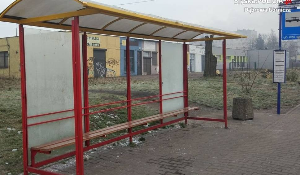Film do artykułu: Dąbrowa Górnicza: Dwaj 16-latkowie zdewastowali wiatę w Gołonogu ZDJĘCIA