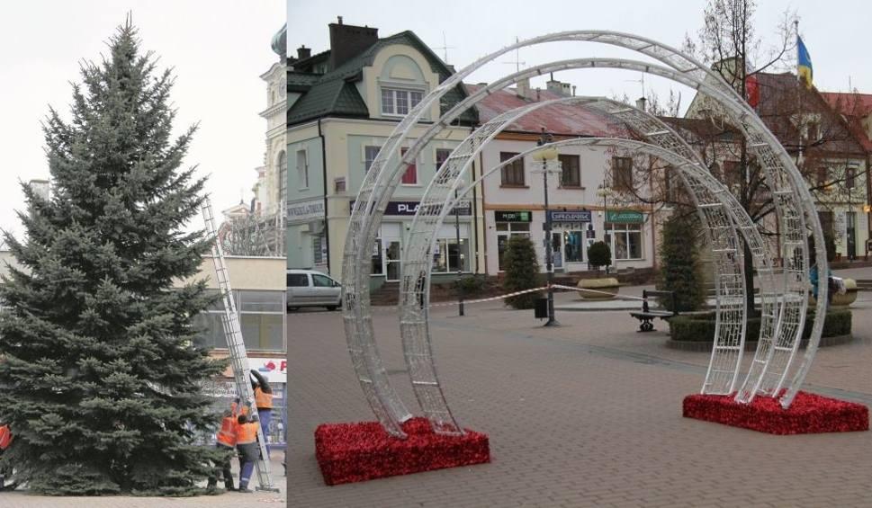 Film do artykułu: Za rok nie będzie ściętej choinki w centrum Tarnobrzega!
