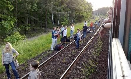 Pociąg z Krakowa do Zielonej Góry przez trzy godziny stał w lesie