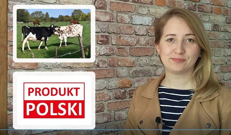 Film do artykułu: Agro Pomorska odc. 91: Polskie produkty i dopłaty do przechowywania żywności[wideo]