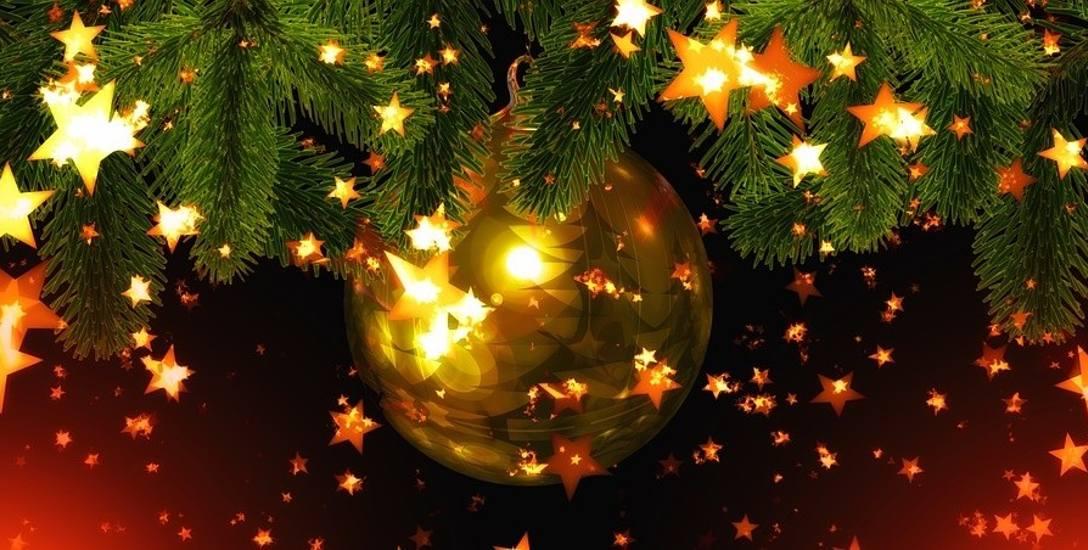 Bożonarodzeniowy ALFABET: Upiorna zemsta karpia według Leszka Mazana