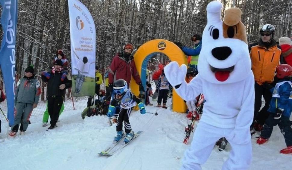 Film do artykułu: Puchar Reksia na Dębowcu w Bielsku-Białej WIDEO Reksio na nartach świętuje swoje 50 urodziny!
