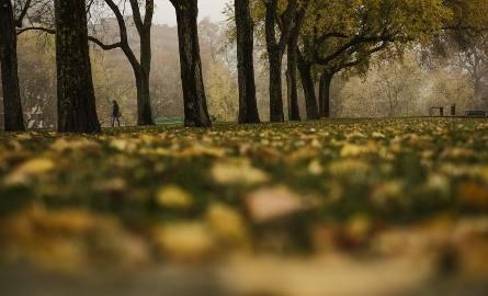 Pogoda w Łodzi i regionie na weekend 21-22 października