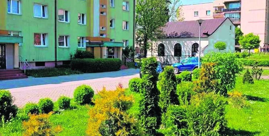 Zielone podwórko przy ul. Słowiańskiej
