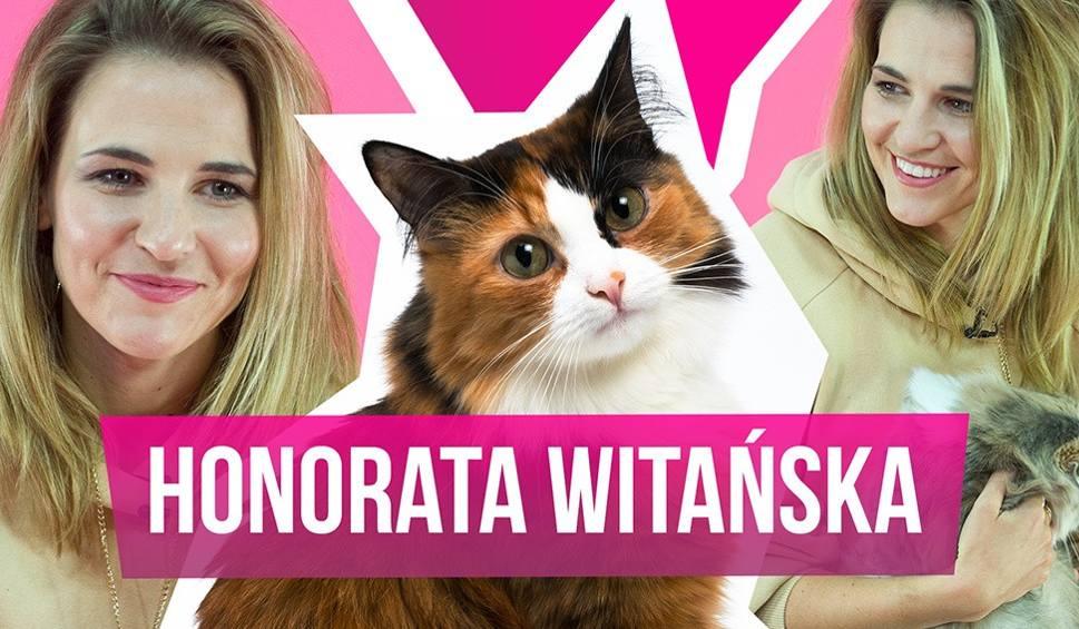 """Film do artykułu: Honorata Witańska w programie """"MiauCzat"""" szczerze o """"Policjantkach i policjantach"""" i przyjaźni z Joanną Kulig!"""