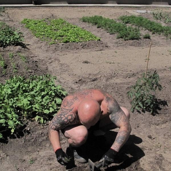 W więzieniu w Czerwonym Borze skazani zakładają i sami uprawiają ogród. To zajęcie zmniejsza stres i zapewnia świeże warzywa