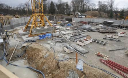 Orientarium w łódzkim zoo ma już gotową część podziemną. Wkrótce zacznie się budowa ścian. Termin oddania budynku do użytku dla zwiedzających to nadal