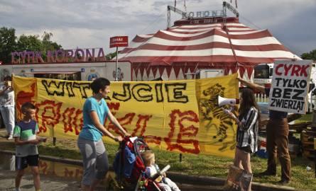 """Protest pod cyrkiem. """"Zwierzęta nie są w cyrku z własnej woli!"""""""