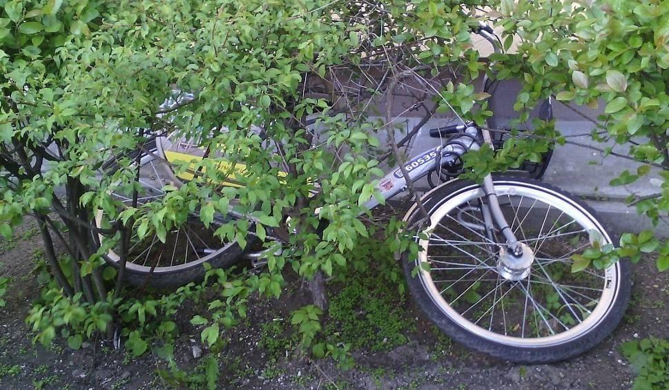 Film do artykułu: Radomski Rower Miejski. Porzucone rowery wracają na stacje