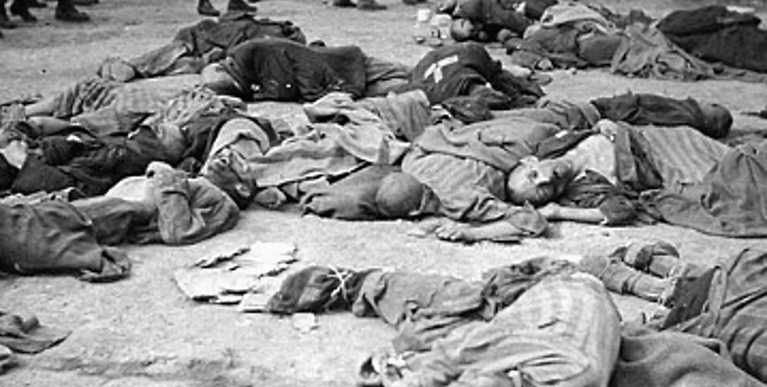 Największe szaleństwo XX wieku. Książka prof. Iana Kershawa o doświadczaniu wojny