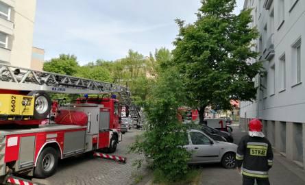 Poznańscy strażacy po raz kolejny musieli interweniować w piątek przy ul. Ziętary z powodu roju pszczół. Mimo że poprzednia interwencja miała miejsce