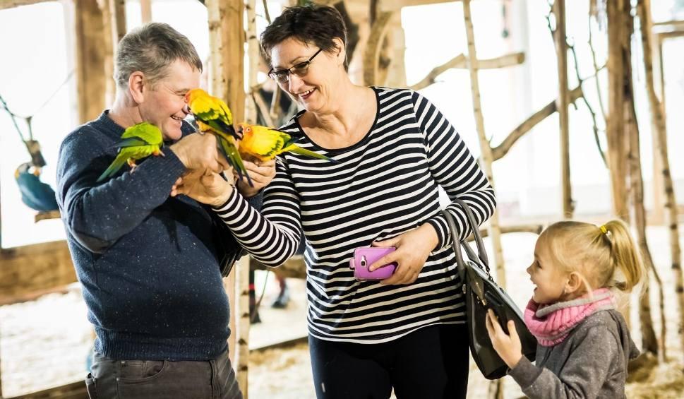 Film do artykułu: Babcie i dziadkowie świętują w Bydgoszczy [zdjęcia]