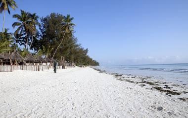 Palmy i plaża kuszą nas na sylwestra [infografika]