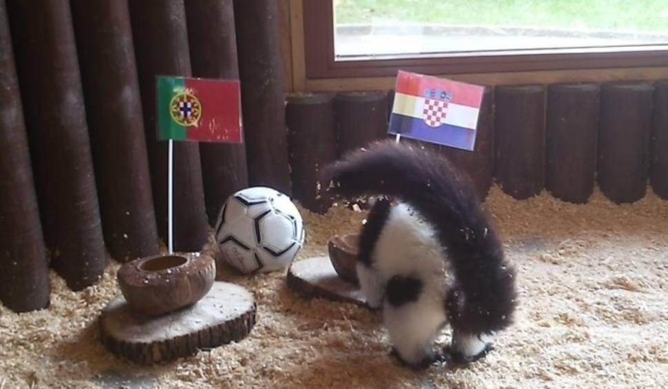 portugalia chorwacja mecz