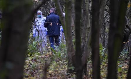 Zarzut zabójstwa usłyszała 38-letnia kobieta, która miała urodzić żywą dziewczynkę, po czym włożyć ją do foliowego worka i zakopać w lesie koło domu.CZYTAJ