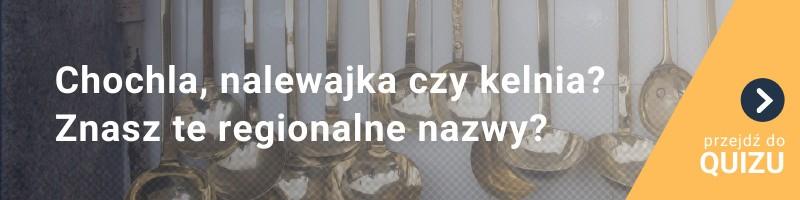 [QUIZ] Chochla, nalewajka czy kelnia? Znasz regionalne nazwy tych przedmiotów?