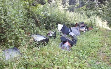 Ministerstwo Środowiska zapowiada walkę ze śmiecącymi w lasach. Kary nawet do 5 tysięcy złotych