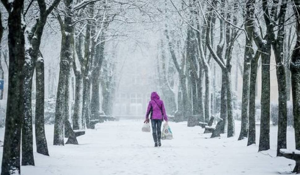 Film do artykułu: Pogoda. Tydzień z zimą. Na szczęście delikatną