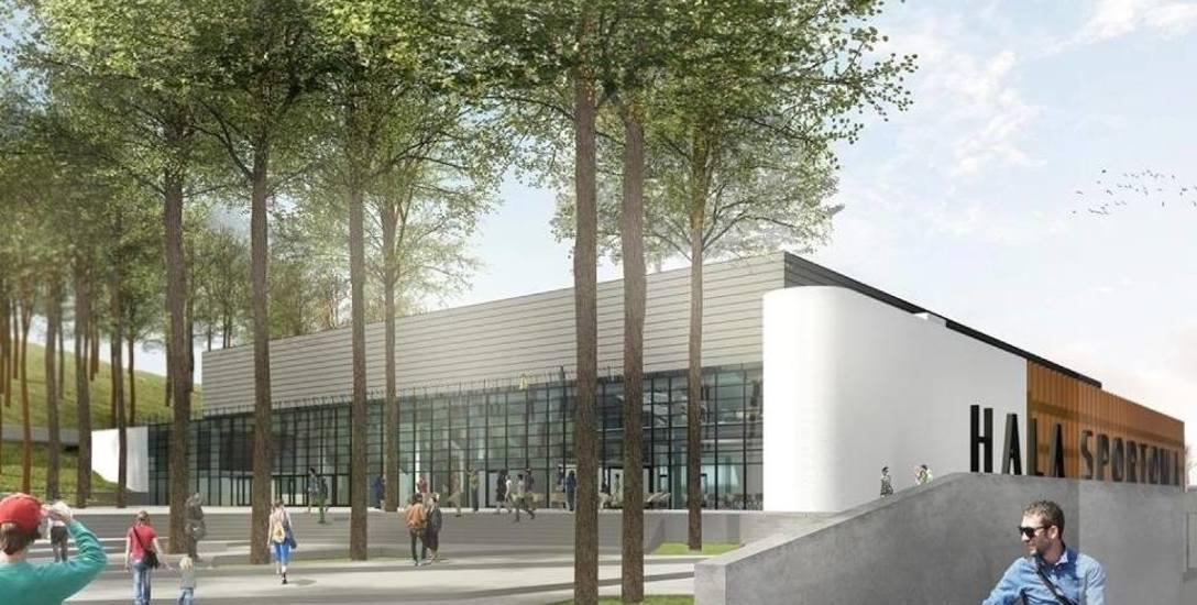 Pod budowę hali trzeba będzie wyciąć ponad 900 drzew.