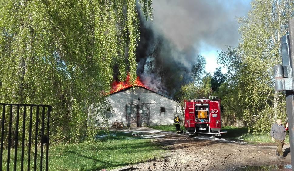 Film do artykułu: Pożar przy ul. Leśnej w Szczecinie. Palił się magazyn reklamówek w Załomiu [WIDEO, ZDJĘCIA]