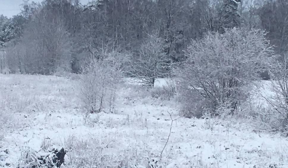 Film do artykułu: Jaka pogoda w poniedziałek 7 stycznia 2019? Na wschodzie i południu kraju pogodnie. Nad resztą kraju popada śnieg i deszcz ze śniegiem