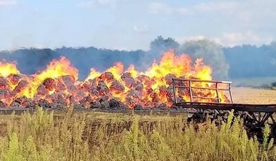Film do artykułu: SKWIERZYNA. We wsi Goraj płonął stóg siana, ogień nie przeniósł się na pole. Strażacy powstrzymali pożar [zdjęcia]
