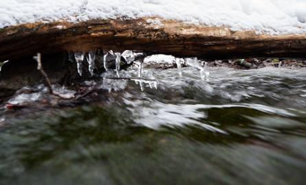 Zimowa Dolina Będkowska, niezwykła dolina w zimowej, śnieżnej szacie [GALERIA]