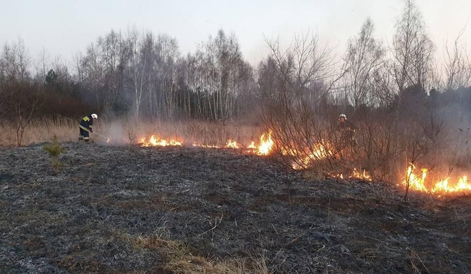 Film do artykułu: Region radomski. Choć jest kalendarzowa zima, to już podpalacze podkładają ogień na łąkach, nieużytkach