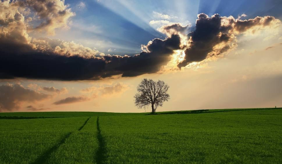 Film do artykułu: Pogoda na środę 18  lipca. Na co możemy liczyć - słońce czy deszcz?
