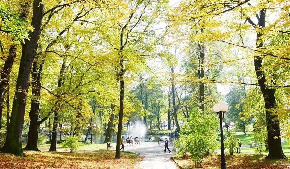 Film do artykułu: Wodzisław Śląski: Kolory jesieni w Parku Miejskim ZDJĘCIA