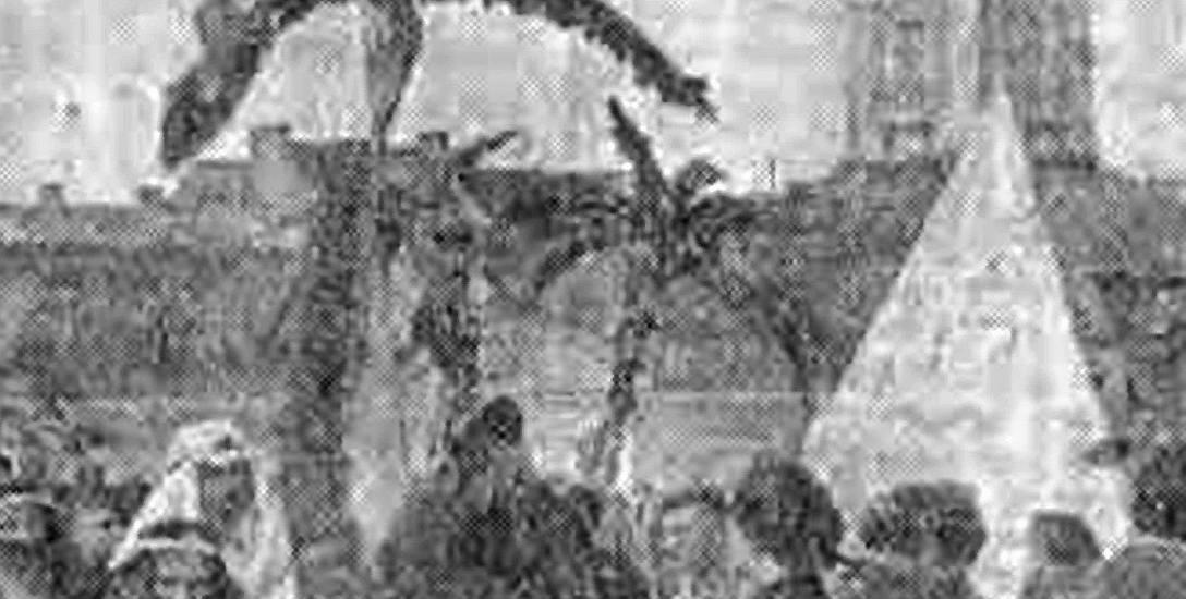 Arabska karawana pod Ratuszem. Uczniowie szkół średnich świętują