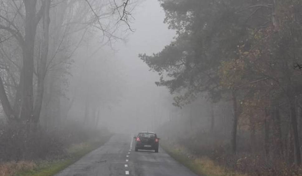 Film do artykułu: Pogoda na weekend: Coraz chłodniejsze noce, ale w dzień będzie jeszcze powyżej 10 stopni