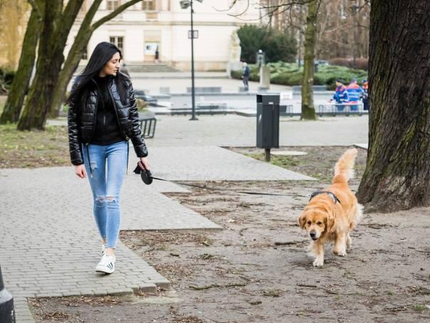 Mieszkaniec Przemyśla: policja straszy mandatem za wyjście z psem na spacer