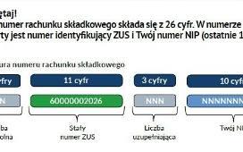 Druk Przelewu Online Bankowy Do Zus I Us Jak Prawidłowo
