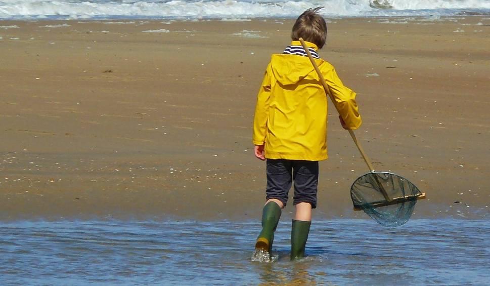 Film do artykułu: Alarm na plażach. Ocean wyrzucił już prawie 800 kilogramów kokainy [15.11.2019]