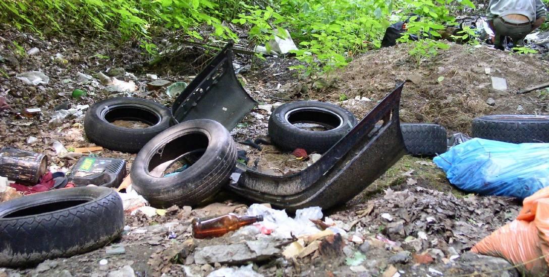 Śmiecisz w lesie? Możesz zostać nagrany i ukarany