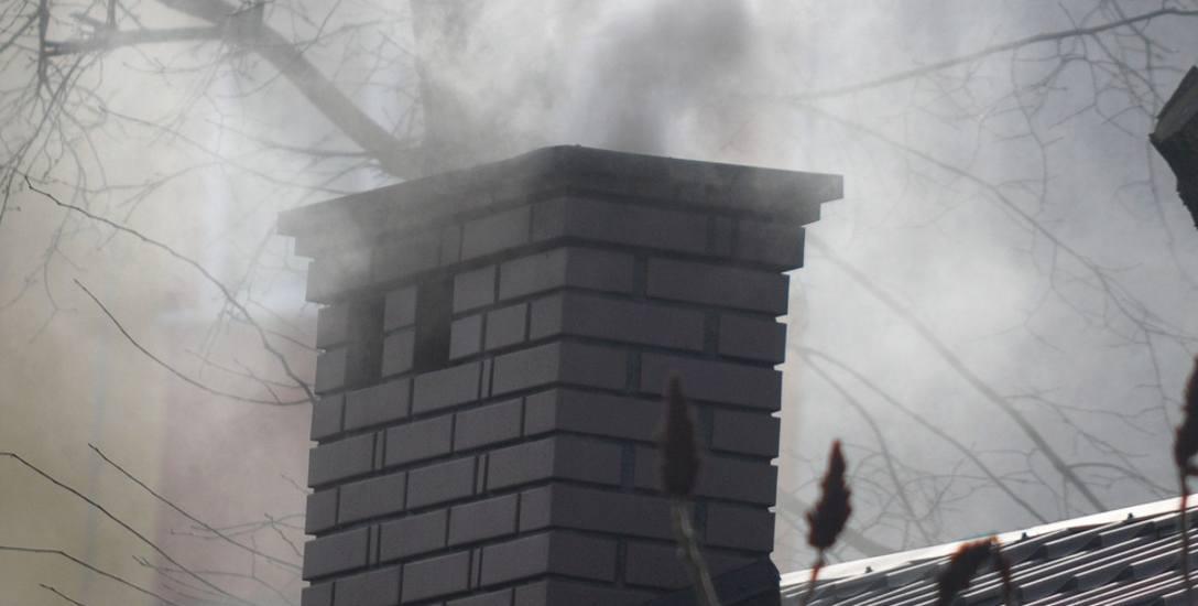 Wiele polskich miast boryka się ze szkodliwym dla zdrowia smogiem. Zanieczyszczenie to m.in. efekt palenia odpadami.